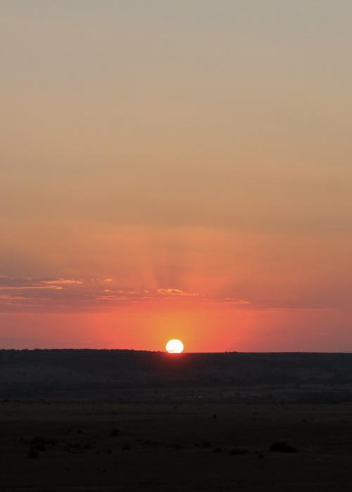 Explore It All Travel Blog: Shamwari Game Reserve18