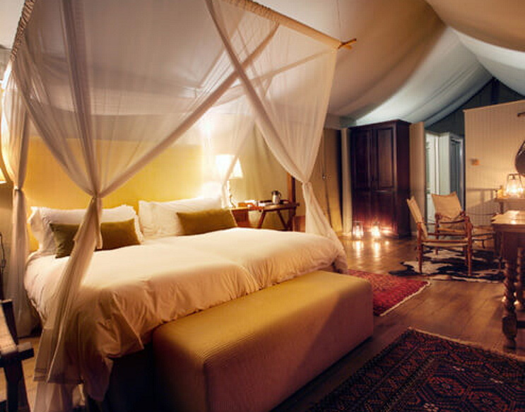 Explore It All Accommodation South Africa: Camp Figtree1